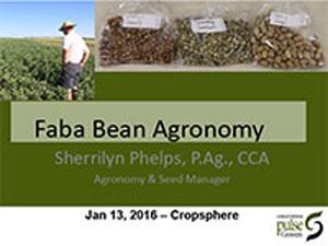 presentation-2016-Sherrilyn-Phelps-Fababean.jpg