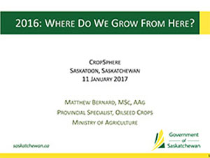 presentation-2017-Matthew-Bernard.jpg