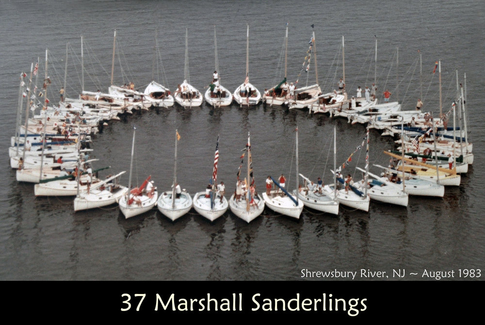 37 Marshall Sanderlings.jpg