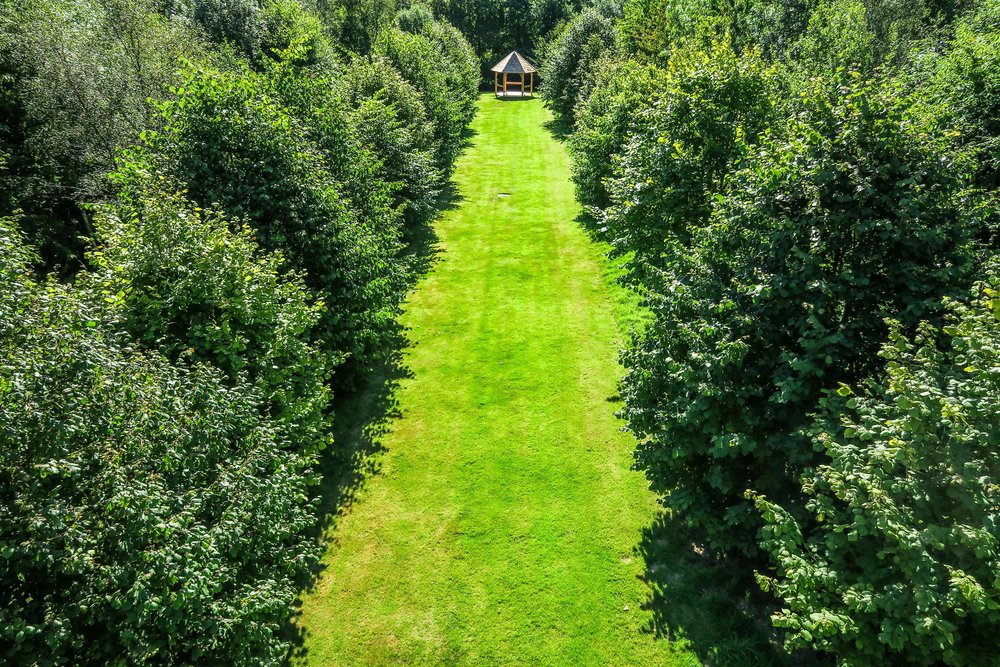Cosawes Barton Lime Tree Aisle Cornwall