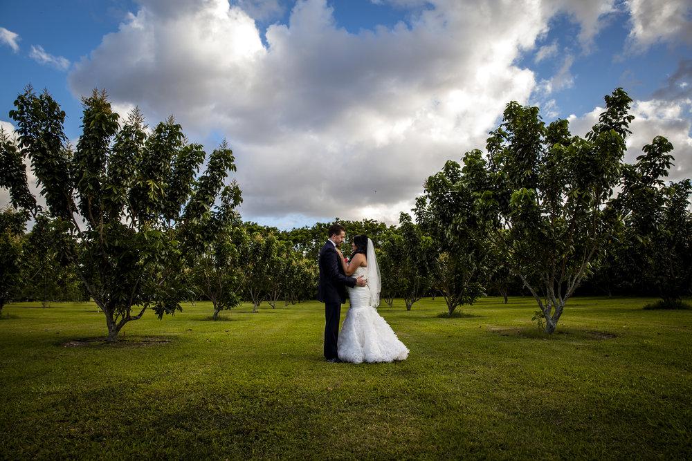Longans-Place-Miami-Wedding-2358.jpg