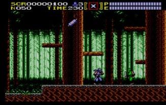 ninjagaidensms-2