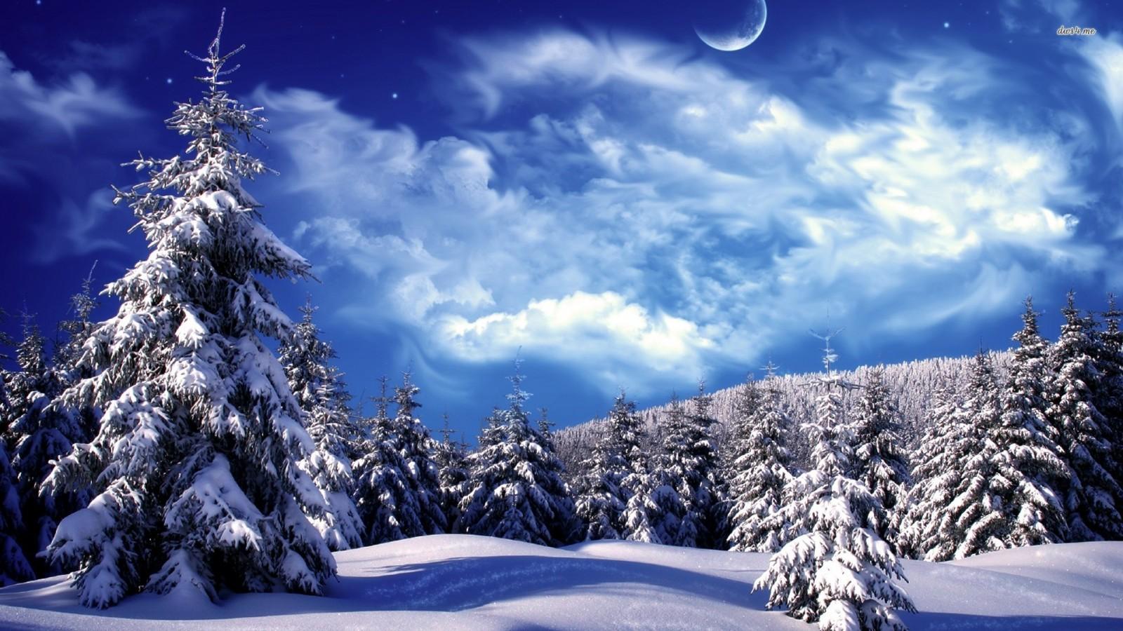 awesome-winter-wonderland-full-hd-wallpapr