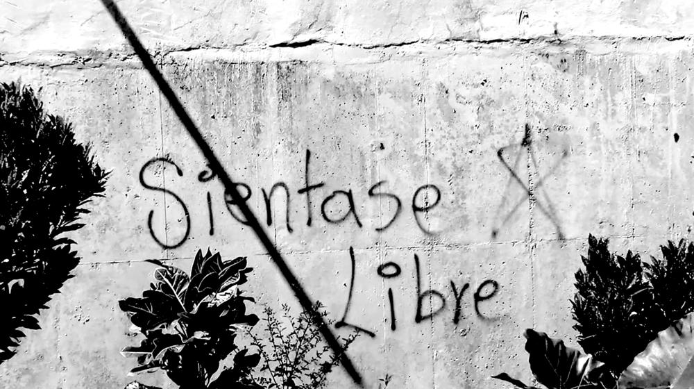 libre.png