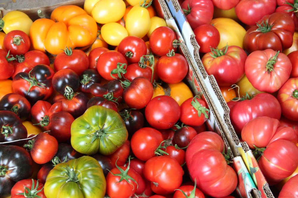 Specializing in heirloom varieties of vegetables. Tomatoes are our specialty.  Contact us to see what is currently available.