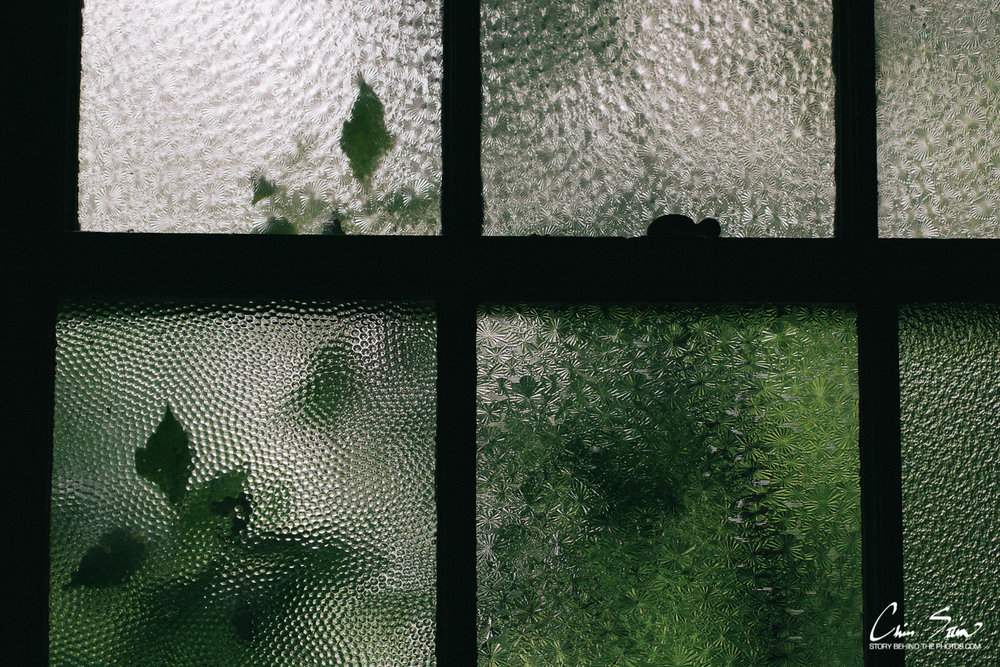 rainy window2018.jpg
