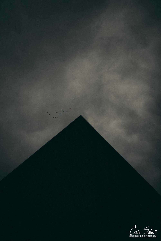 birds2018.jpg