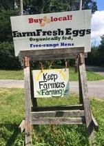 Fresh Eggs on Flats Road