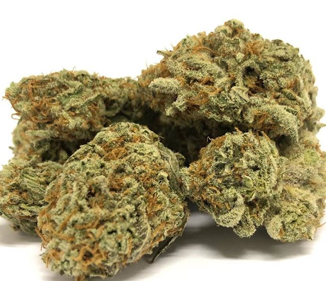 Fresh in * Berry crunch * stop in for this tasty sativa it's super size Sunday son get your free gram on top of your 1/8th or more 🔥🔥🔥#pasadena #pasadena419 #sativa #privatereserve #onlythebest #terps #dank #weedporn #weed