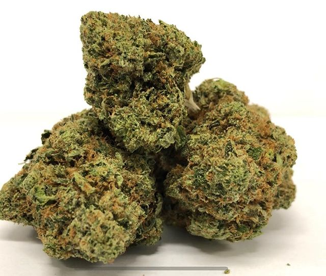 Fresh In Connoisseur *** LUNAR OG ** stop in for a FRIDAY pickup 🔥🔥🔥🔥🔥#pasadena #pasadena419 #connoisseur #terps #weedporn #weed #dank #indica #highquality #highlife#weedmaps #420life