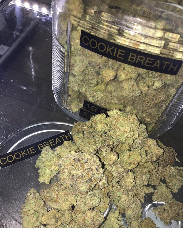 🚨🚨 FINALLY FRIDAY FAM 🚨🚨 STOP BY FOR YOUR 4G EIGHTHS ALL DAY ‼️🔥🔥 COOKIE BREATH IS IN AND LOOKING FIRE 🔥🔥💨💨 #fridaze #wakenbake #fire #stoners #bomb #nofilter #dank #connoisseur #hybrid #indicafav #cookies #blunts