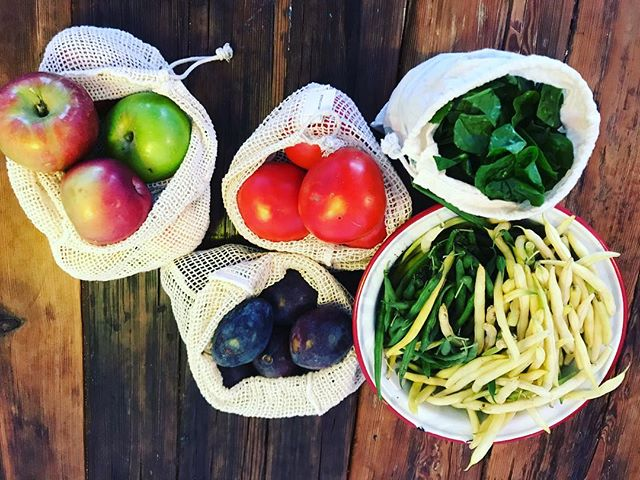 Love farmers market this time of year #precycle #zerowaste #bulkisbeautiful #saynotoplastic #farmersmarket #clintonhill #fortgreene #bushwick #bushwickdaily #noplastic