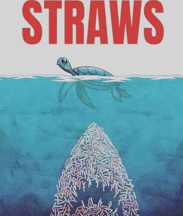 In the U.S., 500 million plastic straws are used every day and many of those straws and stirrers end up in the environment, according to Better Alternatives Now, or BAN 2.0, an analysis done by several pollution research groups. The tides are turning and in turn, making our tides a cleaner place! ⠀ ⠀⠀⠀⠀ ⠀⠀⠀ These are some cities around the US that are banning straws and other single use plastic. New York City, Hawaii, and California have pending straw ban legislation. cities in California, Washington, New Jersey, and Florida have some bans already in place! Bonus: Some stores also have rewards when you bring in your own bag! 📷: via @thepeoplemovement tag the artist #precycle . . . . . . #zerowaste #wastefree #plasticfree #zero  #plastic #sustainability #foodwaste  #today #recycling #reduce #byob #eco #brooklyneats #circulareconomy #packaging #green #zerowastelifestyle #zerowastehelp #smallbusiness #bushwick #bushwicksmallbiz #iamwellandgood #organic #gogreen #bushwickdaily #timeoutnyc #bushwickresident #brooklynbased #brownstoner