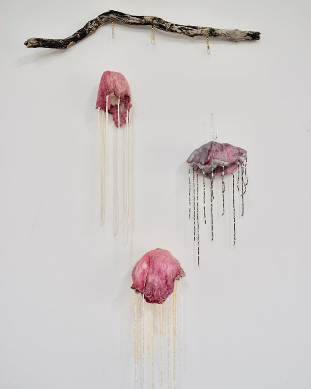 """""""Progression of pollution"""" Southern ocean art prize . Jellyfish constructed of hand dyed wool, silk and seed beads hanging on driftwood. . #textile #textileart #jellyfish #movement #southernoceanartprize #robe #pollution #silk #wool #dyed #beaded"""