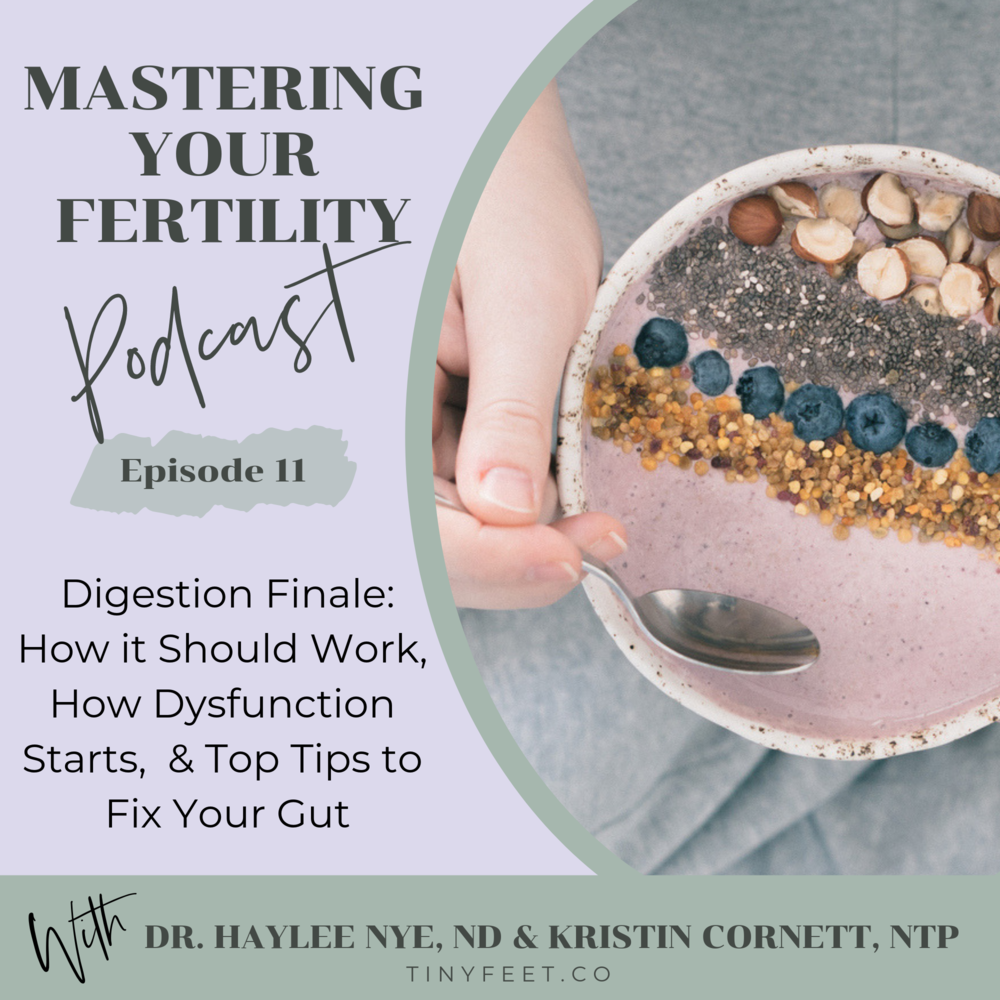 Tiny Feet Mastering Your Fertility Podcast Episode 11