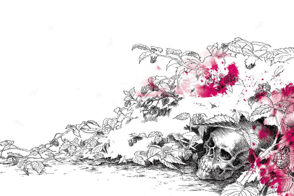 Illustration by Sabine Koops