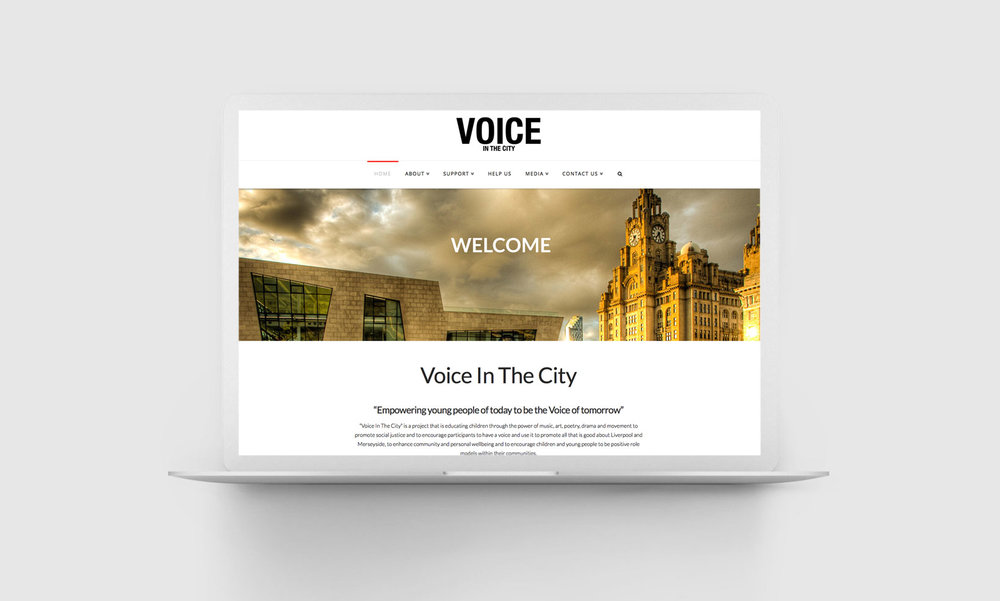 voice-portflio.jpg