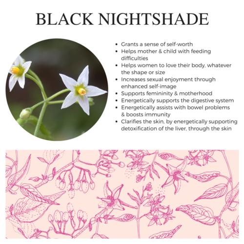 Black Nightshade.png
