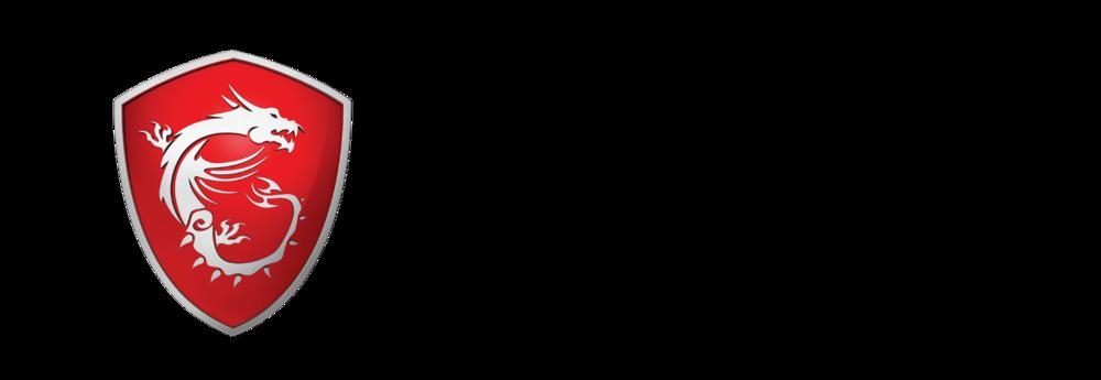 msi-premium-spirit-logo-h-4c-01.png