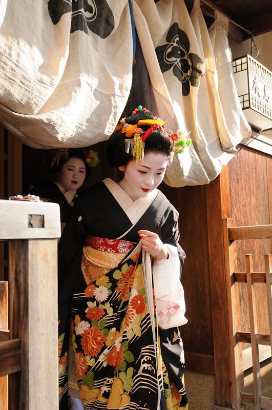 Shigyoshiki-Mameharu-1
