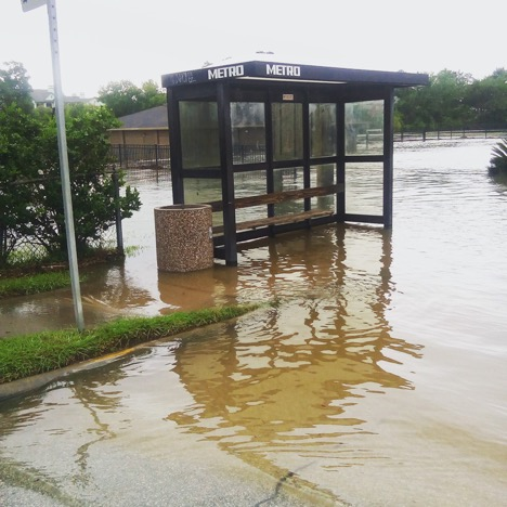 No bus today, Brays Bayou at Ardmore St and N MacGregor Way, Houston, August 27, 2017. Photo: Laura Napier