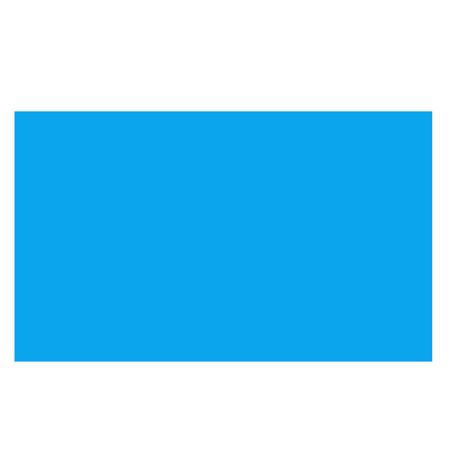 STREETEXEC-LOGO-BLUE.png