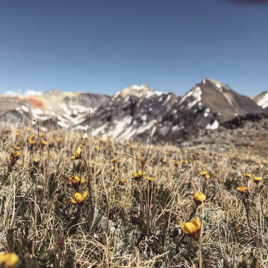 Tomboy Basin near Telluride, Colorado