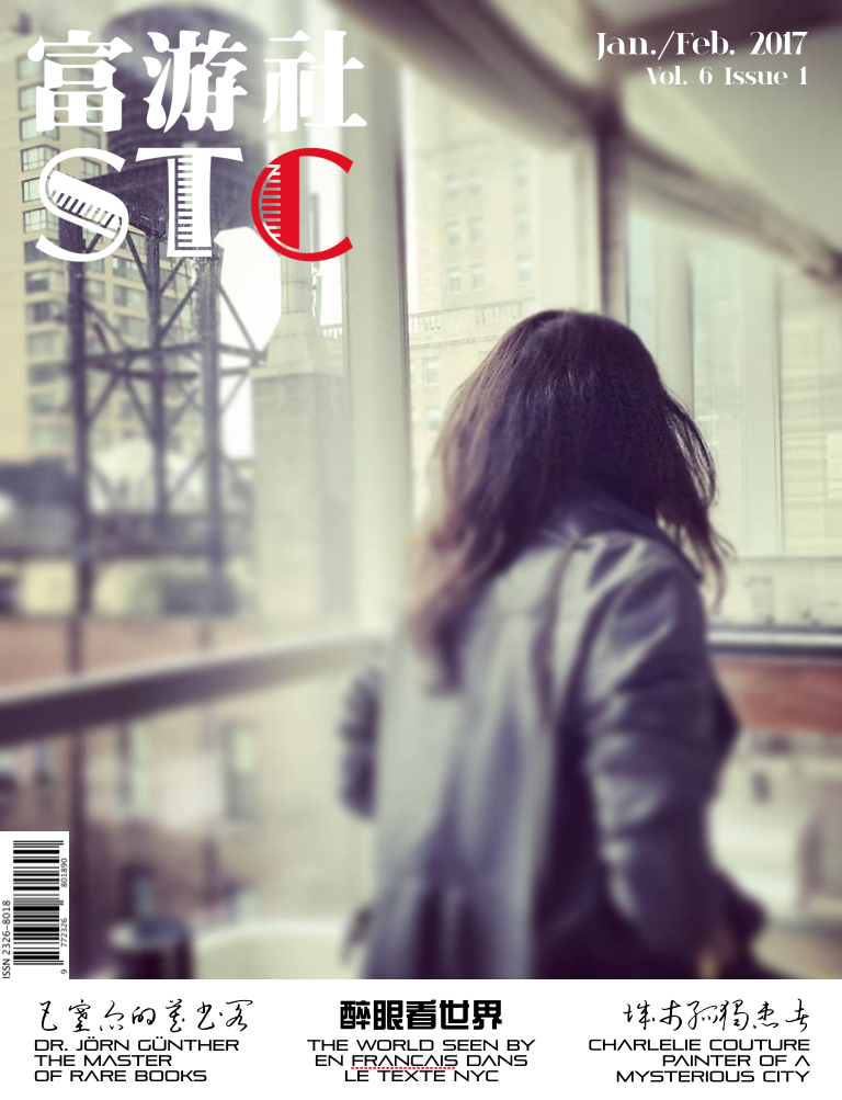 The STC magazine Jan:Feb 2017 Cover.png