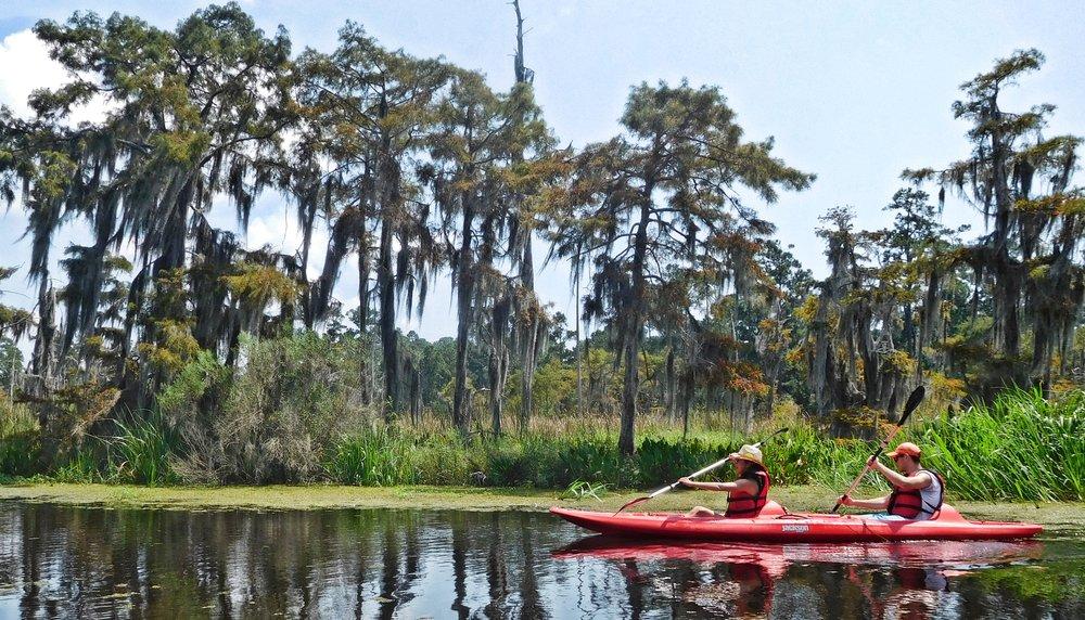 kayak-with-cypress.jpg