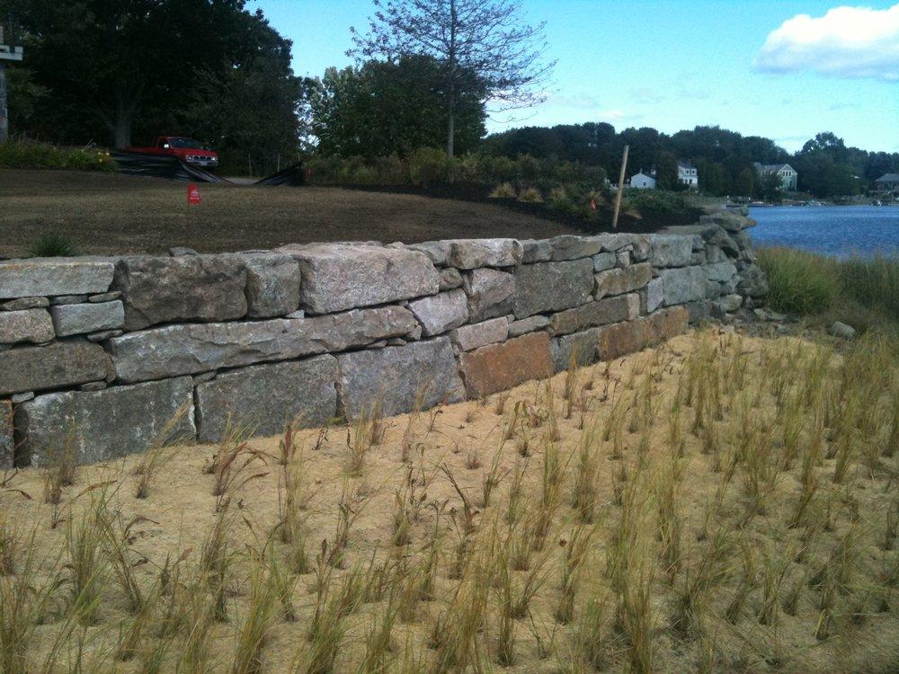 Granite Seawall and Restoration Planting.JPG