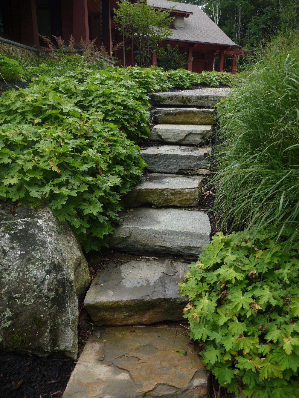 Medomak Stone Steps (2).JPG