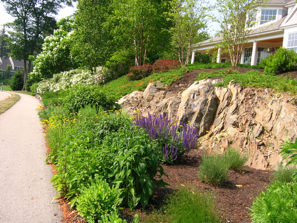 Gardens (3).JPG