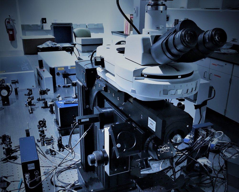 Optical Room.jpg