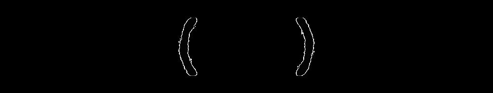 vvi-logo copy_small.png
