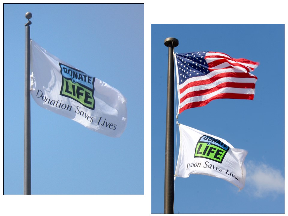 From its genesis as a hospital initiative, Donate Life flags flew above city halls, civic plazas, police headquarters, fire stations, parks and golf courses.