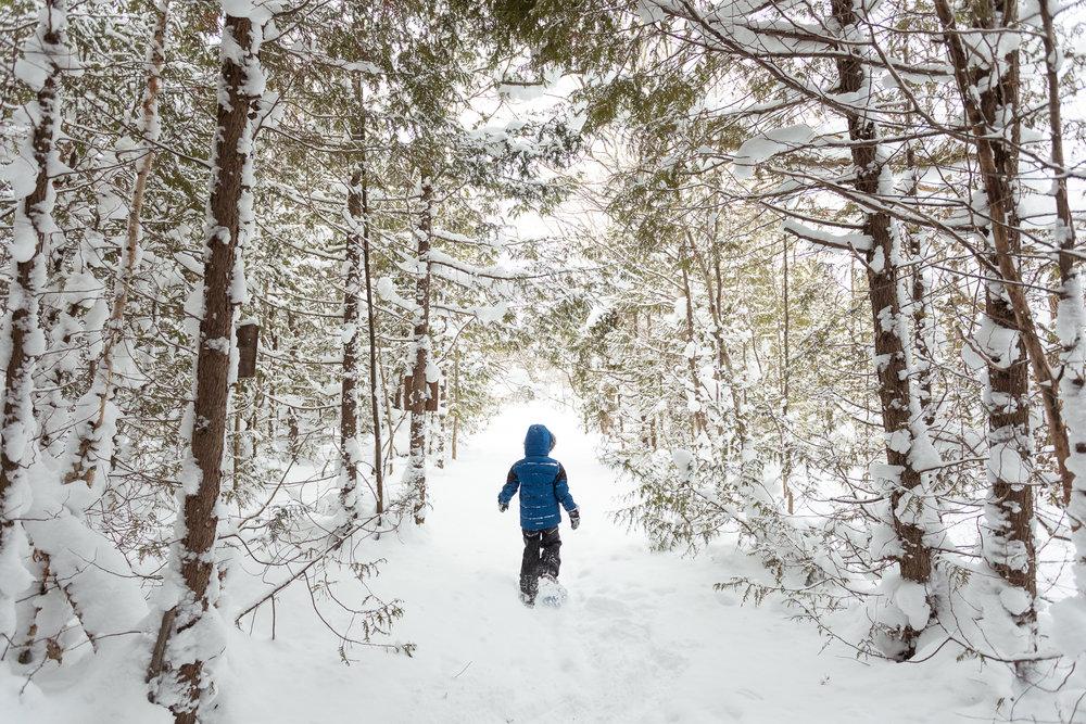 22.Tobermory_Winter_31Dec2017-34.jpg