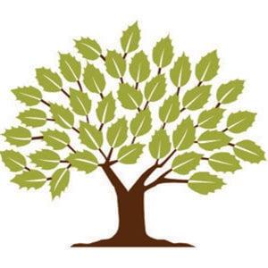 MCDS-Logo.jpg
