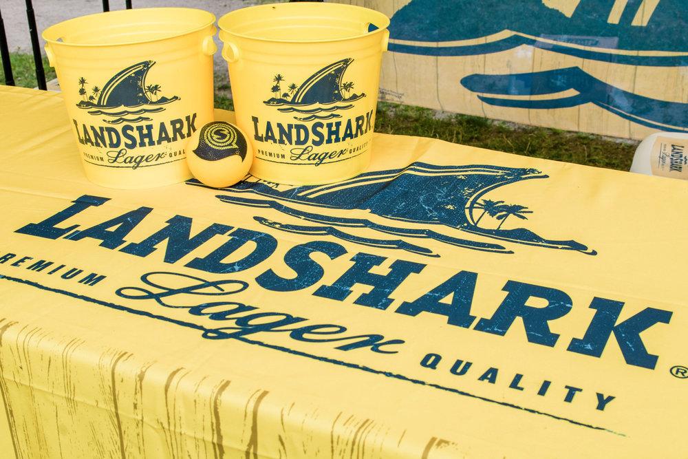 LandsharkSpikeball-07-22-17-592.jpg
