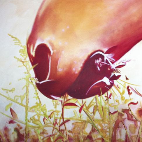 Horse & Grass.jpg