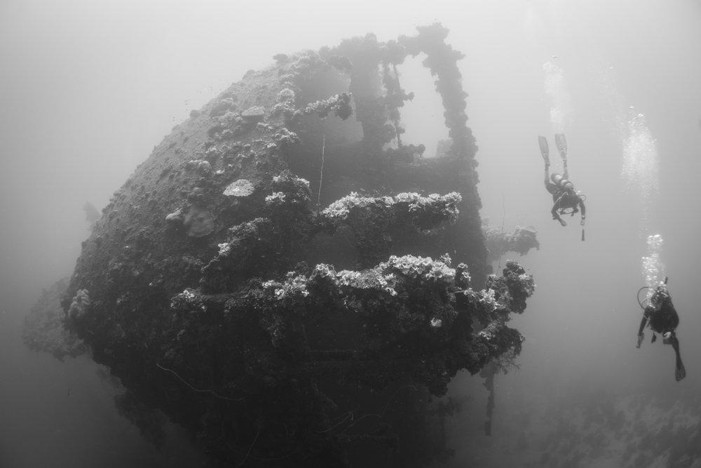Divers swim around the bow of the Rio de Janeiro Maru..jpg