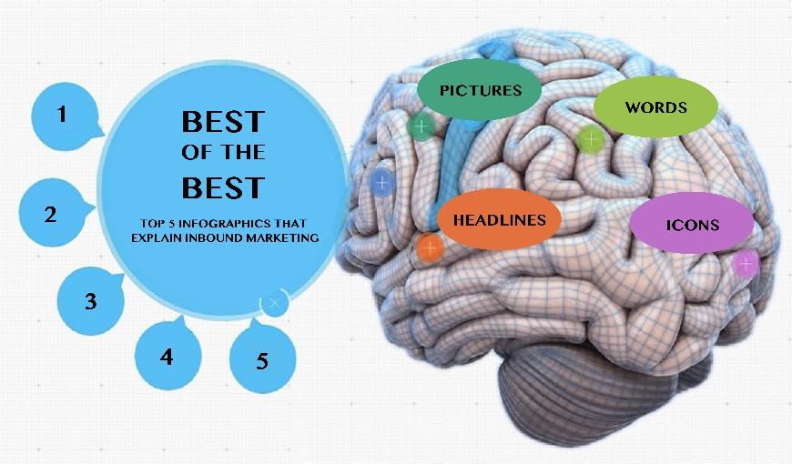 Header_image_brain_on_info-1.jpg