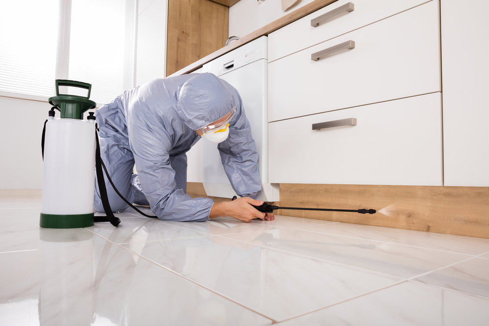 - Residential Pest Control