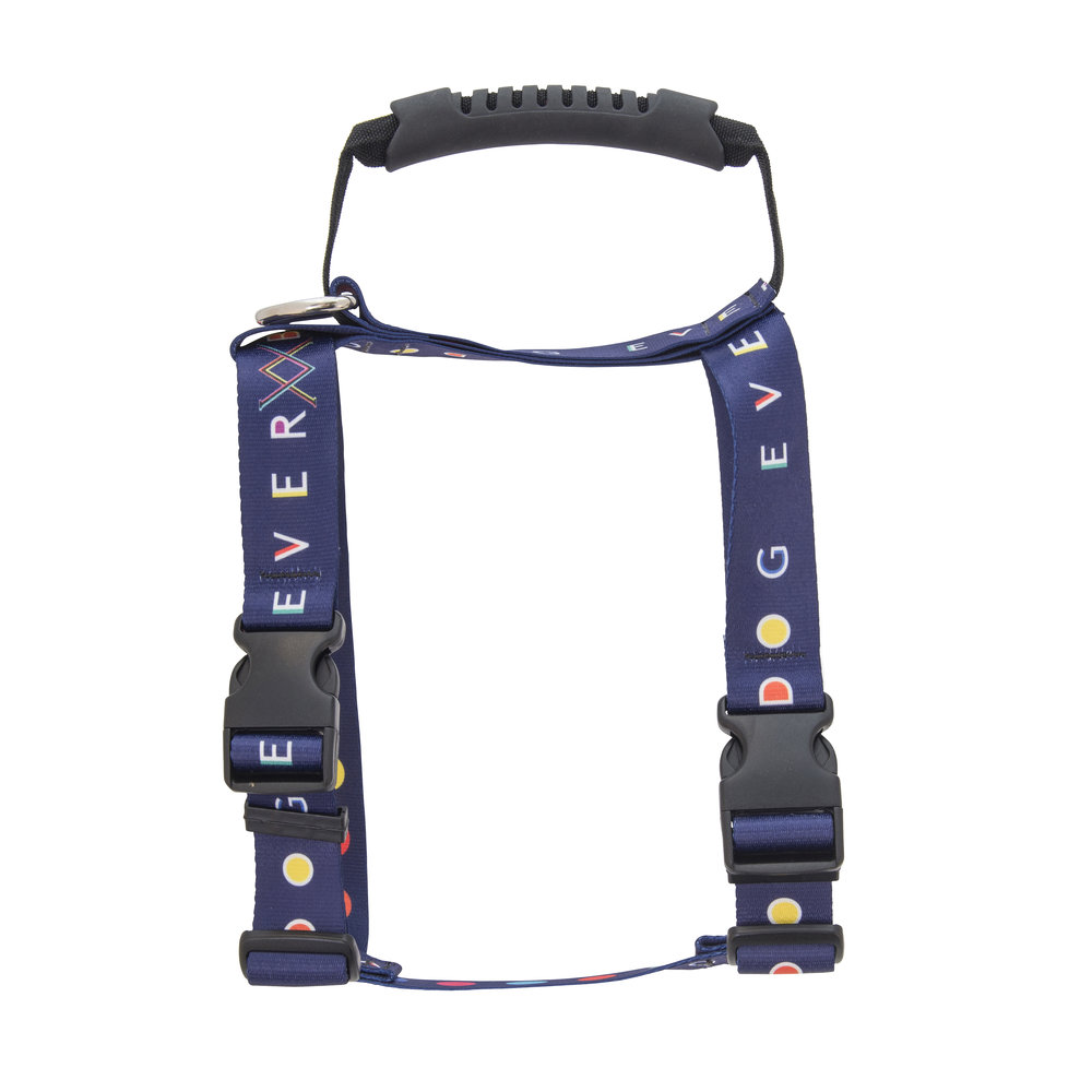 VV Harness - photo by Andrew Werner.jpg