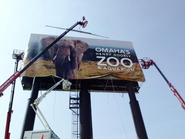 Zoo Pic III IMG_0474.jpg
