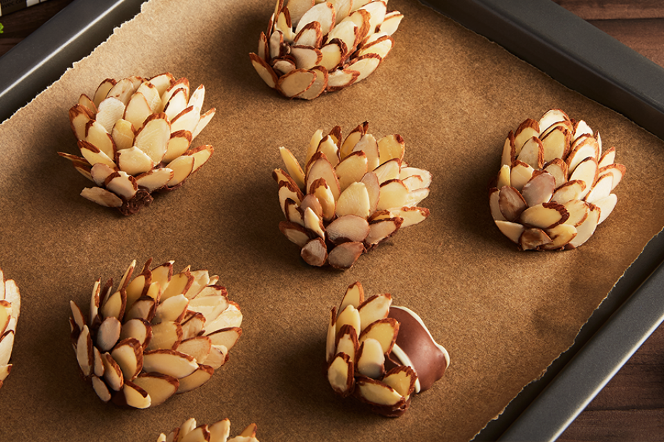 nestle turtles pine cones recipe snack