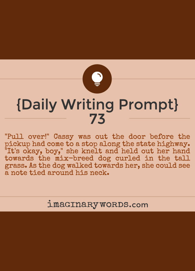 Daily Writing Prompts: 'Pull over!' Cassy was out the door before the pickup had come to a stop along the state highway. 'It's okay, boy,' she knelt and held out her hand towards the mix-breed dog curled in the tall grass. As the dog walked towards her, she could see a note tied around his neck.