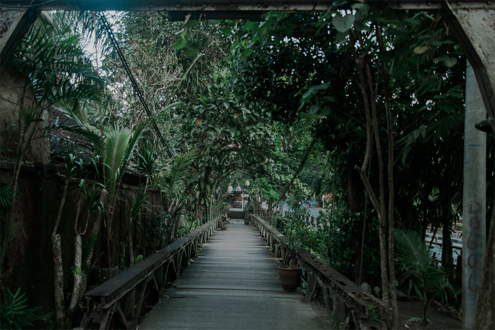 Bridge l Ubud