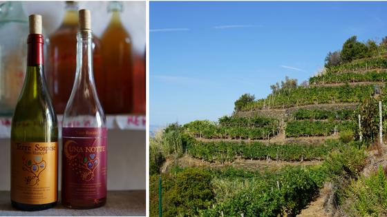 Cinque Terre winemaker Andrea Pecunia's wine, Terre Sospese.