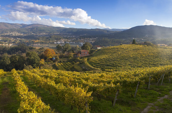 Rias Baixas in North West Spain.  Photo source .