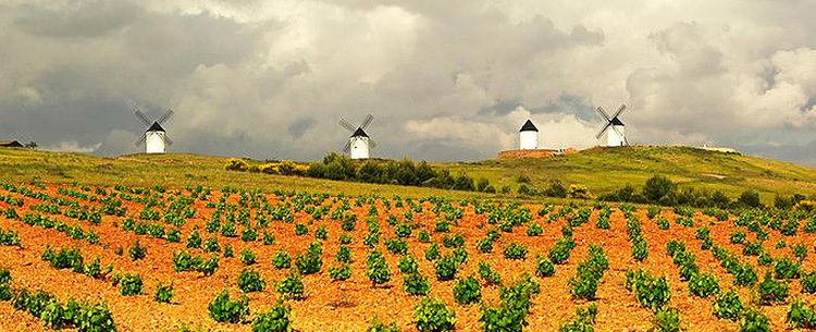 Tierra de Castilla.  Photo source.